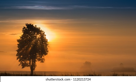 Panoramic morning scenery of sunrise over foggy meadow with sun rays breaking through branches of tree