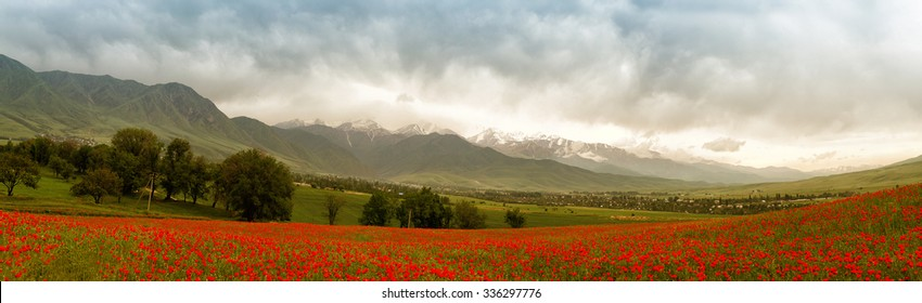 Panoramic mountain landscape
