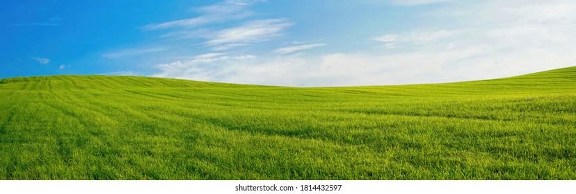 Panoramic natural landscape with green grass field and blue sky with clouds with curved horizon line. Panorama summer spring meadow. - Shutterstock ID 1814432597