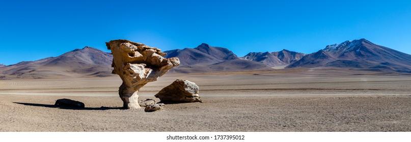 Panoramic photo of Arbol de Piedra near Uyuni in Bolivia. Rock formation. Dessert of Uyuni near Chilean border in Bolivia.