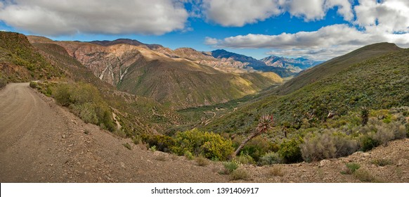 Panoramic photo of the valley of Die Hell in the western cape of South Africa, with blue skie and dotted clouds, vast mountains and greenery and an aloe vera plan in the foreground, with dirt road.