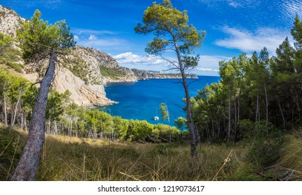 Panoramic picture of lovely Platja des Coll Baix on Mallorca island