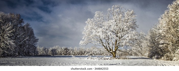 Panoramic Pristine Winter Scenery. Panoramic and pastoral scene blanketed by fresh fallen snow showcasing the frigid beauty of winter. Yale, Michigan.
