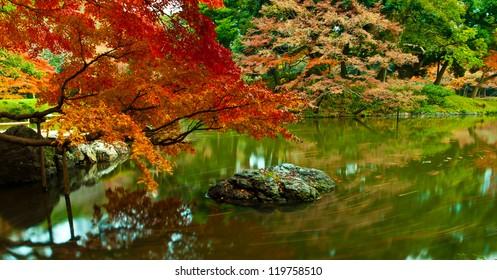 Panoramic scene of Japanese style zen garden, Koishikawa korakuen garden, Tokyo, Japan