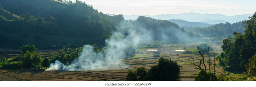 Panoramic scenery of rice fields in Mae Hong Son province , Thailand