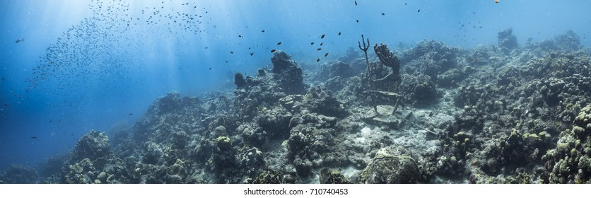 panoramic seascape of the coral reef in the Caribbean Sea around Curacao with sun beams
