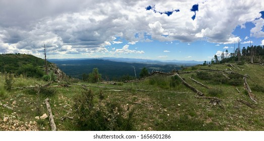 Panoramic shot of view from Mogollon Rim in Happy Jack, Northern Arizona