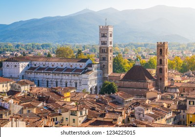 Panoramic sight in Lucca, with the Duomo of San Martino. Tuscany, Italy.