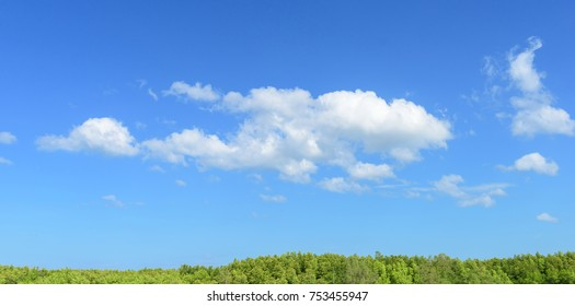 Panoramic sky with white cloud on a sunny day