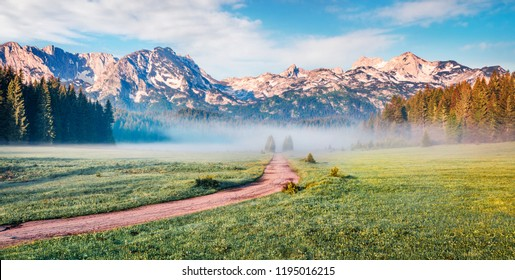 Panoramic summer scene of Durmitor Nacionalni Park. Foggy morning view of Montenegro countryside, Zabljak town location. Beautiful world of Mediterranean countries. Traveling concept background.