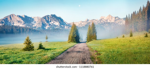 Panoramic summer scene of Durmitor National Park. Splendid foggy view of Montenegro countryside, Zabljak town location. Beautiful world of Mediterranean countries. Traveling concept background.