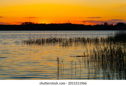 Panoramic summer sunset view of Jezioro Selmet Wielki lake landscape with reeds and wooded shoreline in Sedki village in Masuria region of Poland - Shutterstock ID 2011511966