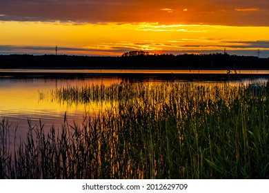 Panoramic summer sunset view of Jezioro Selmet Wielki lake landscape with reeds and wooded shoreline in Sedki village in Masuria region of Poland - Shutterstock ID 2012629709