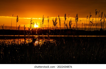 Panoramic summer sunset view of Jezioro Selmet Wielki lake landscape with reeds and wooded shoreline in Sedki village in Masuria region of Poland