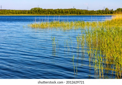 Panoramic summer view of Jezioro Selmet Wielki lake landscape with reeds and wooded shoreline in Sedki village in Masuria region of Poland - Shutterstock ID 2012629721