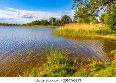 Panoramic summer view of Jezioro Selmet Wielki lake landscape with reeds and wooded shoreline in Sedki village in Masuria region of Poland - Shutterstock ID 2014766273