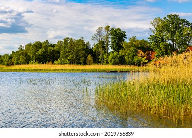 Panoramic summer view of Jezioro Selmet Wielki lake landscape with reeds and wooded shoreline in Sedki village in Masuria region of Poland