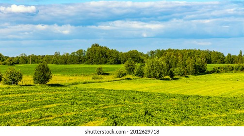 Panoramic summer view of meadows and wooded plains at Jezioro Selmet Wielki lake in Sedki village in Masuria region of Poland - Shutterstock ID 2012629718