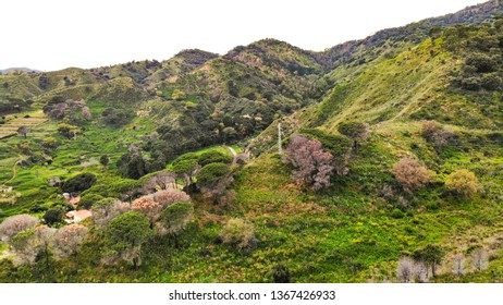 Panoramic top view of the forest and mountain near the beautiful old Italian city Messina and Reggio Calabria, Sicily (island), Italy. Europe. Mediterranean sea. Landscape. Nature.