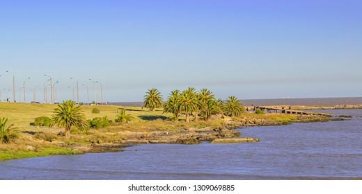 Panoramic urban beach coastal summer day scene at montevideo city, Uruguay