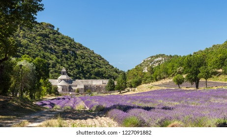 Panoramic view of Abbaye de Senanque with blooming lavender field, Vaucluse, Provence, France