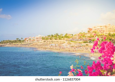 panoramic view of Adeje coast with flowers, Tenerife, Spain, toned