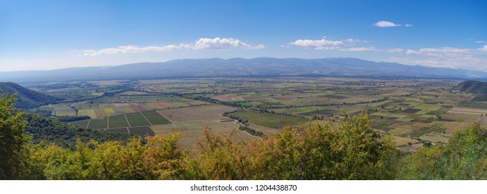 Panoramic view of the Alazani Valley. One of the main areas of viticulture of Georgia. Center of the Georgian wine industry. Nature and travel. Kakheti region
