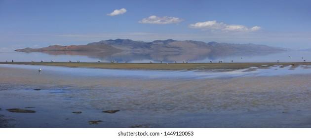 Panoramic view of Antelope Island State Park in Utah