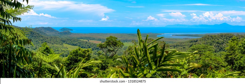 Panoramic view australian rainforest with river and coastline cairns