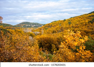 Panoramic view of the autumn forest in the Luberon National Park, Provence, France.