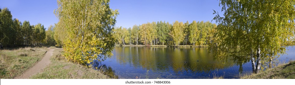 Panoramic view of the autumn landscape. Golden birch forest at the river bank and it's reflection in the water. View from the other bank of the river.