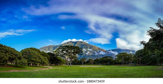 Panoramic view of Avila mountain at morning from Parque del Este. Caracas, Venezuela