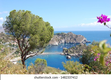 Panoramic view  of Mazzarò bay and beach and Isola Bella and blue sea  Taormina Sicily Italy with a foreground of a violet bougainvillea flower on the right and a green maritime pine tree on the left