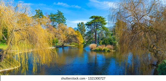 Panoramic view of Beacon Hill Park during the spring in Victoria, Vancouver Island, Canada