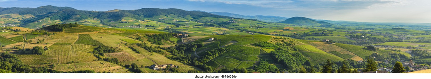 Panoramic view of Beaujolais land with morning lights, France