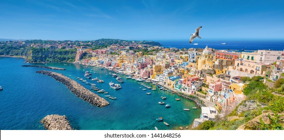 Panoramic view of beautiful Procida in sunny summer day. Colorful houses, cafes and restaurants, fishing boats and yachts in Marina Corricella, clear blue sky and azure sea in Procida Island, Italy.