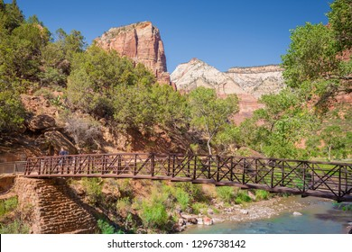 Panoramic view of beautiful scenery in  scenic Zion Canyon on a beautiful sunny day with blue sky in summer, Zion National Park, Springdale, southwestern Utah, USA