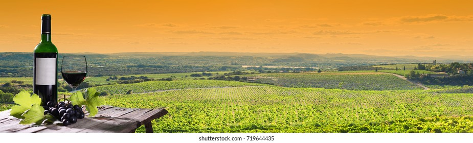 panoramic view of a beautiful vineyard landscape at sunset with a bottle and a glass of wine in foreground