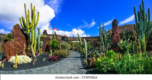 Panoramic view of Cactus garden - popular attraction in Lanzarote, Canary islands