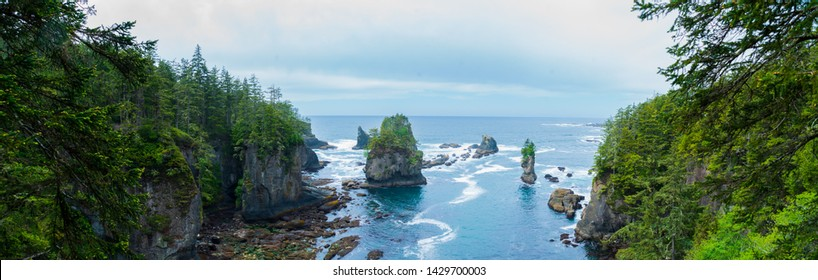 Panoramic view of Cape Flattery cove in Pacific Northwest, Washington State.