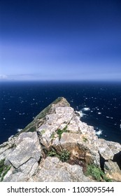Panoramic view of Cape Point, Western Cape, South Africa
