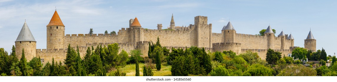 Panoramic view of Carcassonne fortress France, closeup of olive trees
