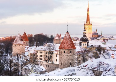 Panoramic view of the castle and the old town of Tallinn from the observation platform in winter