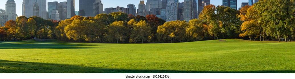 Panoramic view of Central Park South Sheep Meadow in early morning sunlight. Manhattan, New York City