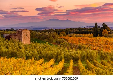 Panoramic view of the Chianti region in Tuscany, Italy. with an abandoned farmhouse. Autumn season.