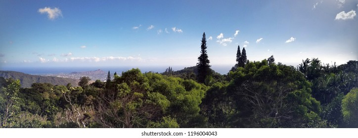 Panoramic view of the city of Honolulu from Diamond head to Manoa with Kaimuki, Kahala, and oceanscape visible on Oahu on a nice day at  viewed from high in the mountains with tall trees.