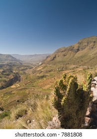 Panoramic view of the Colca Canyon. Peru