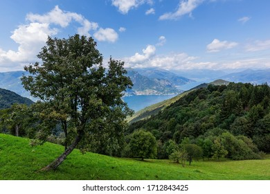 Panoramic view of the Como lake from the Saint Primo Mount, Lombardy, Italy.