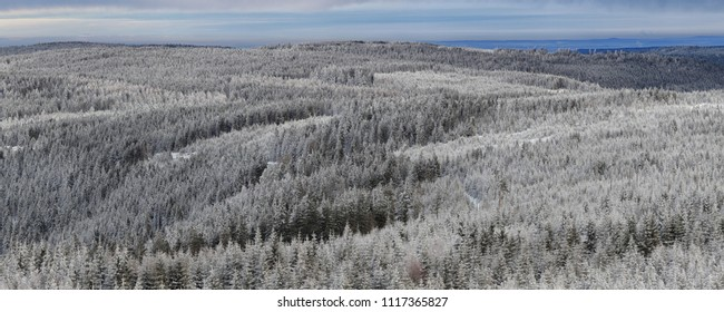 Panoramic view of coniferous forest covered with light snow on the mountains shortly after sunrise