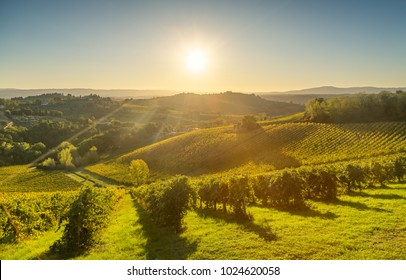 Panoramic view of countryside and chianti vernaccia vineyards from San Gimignano on sunrise. Tuscany, Italy, Europe.